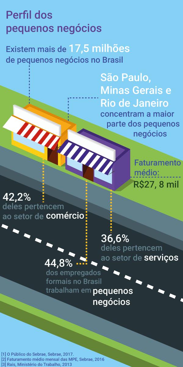 Infográfico-perfil-dos-pequenos-negócios