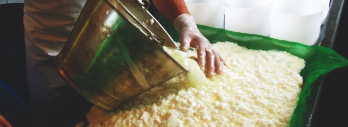 Fabricação do queijo do Serro.