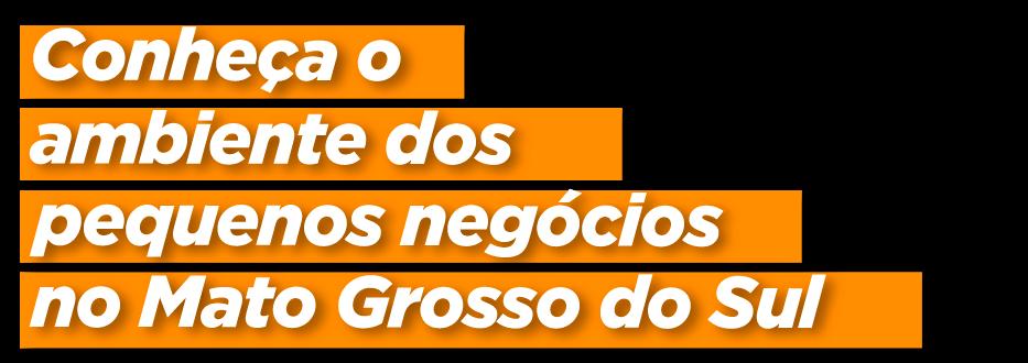 Conheça o ambiente dos pequenos negócios em Mato Grosso do Sul