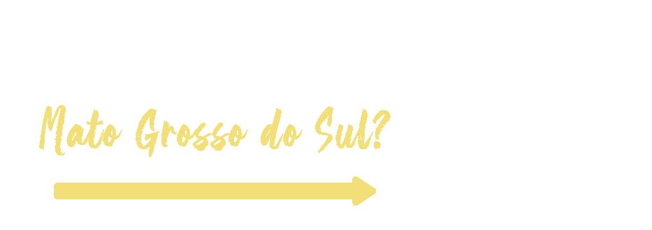 Qual é o perfil de consumo do turista que visita Mato Grosso do Sul?